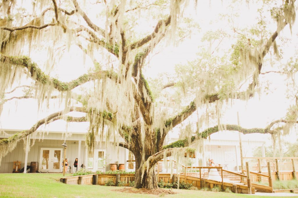 Venue Staircase Up the Creek Farms Spanish Moss | Labryinth Inspired Whimsical Wedding David Bowie Ballroom Scene Gold White Pink Brown Anna Christine Events