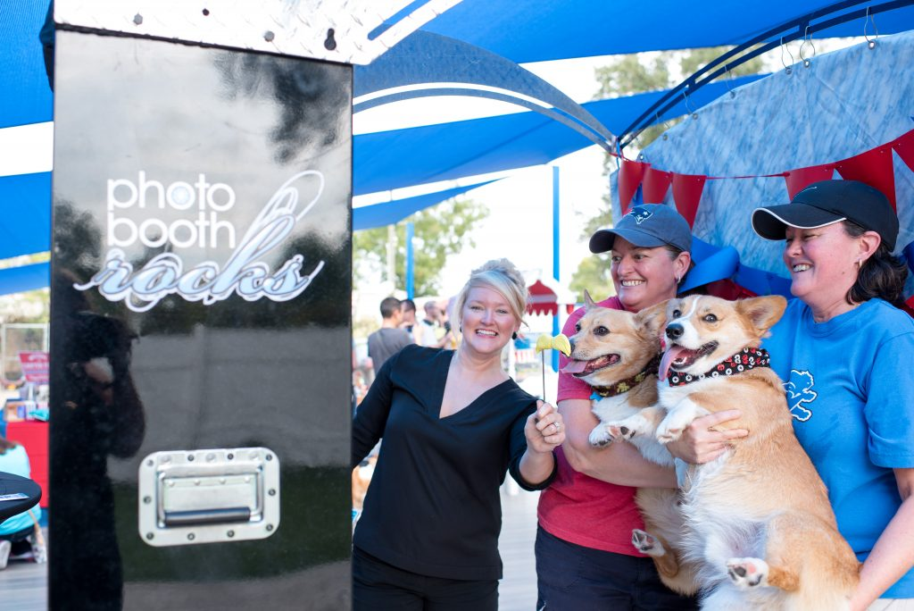 Photo Booth Rocks Dog Pictures Props | Carter the Corgi Birthday Party Baseball Theme Orlando Canine Country Club Anna Christine Events Cute