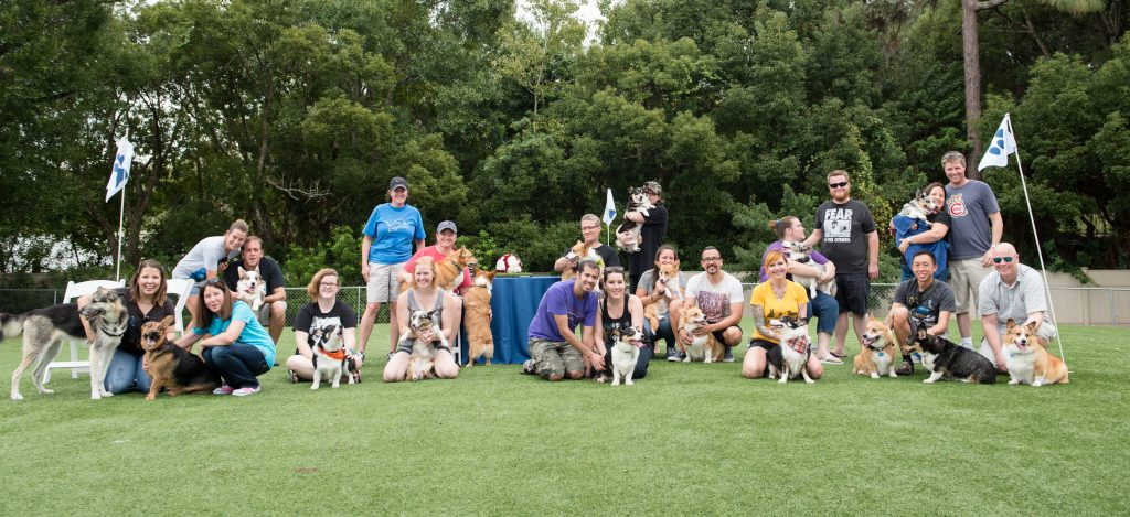 Group Shot Dogs & Humans Owners Puppies Puppers | Carter the Corgi Birthday Party Baseball Theme Orlando Canine Country Club Anna Christine Events Cute